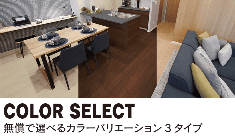 COLOR SELECT